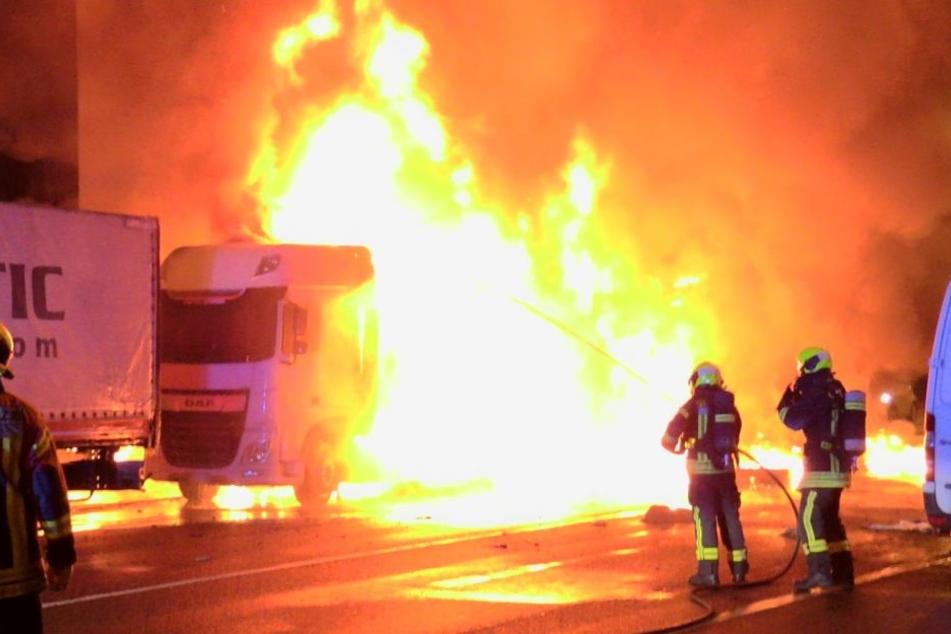 30 Feuerwehrmänner kämpften gegen die Flammen.