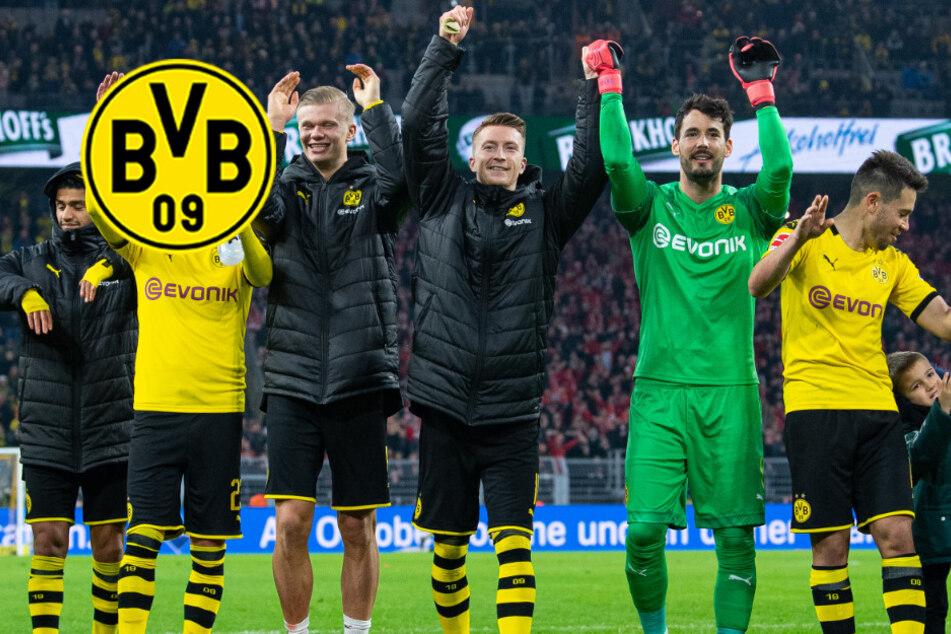 BVB kurz vor Verlängerung: Dortmund bindet Leistungsträger langfristig!