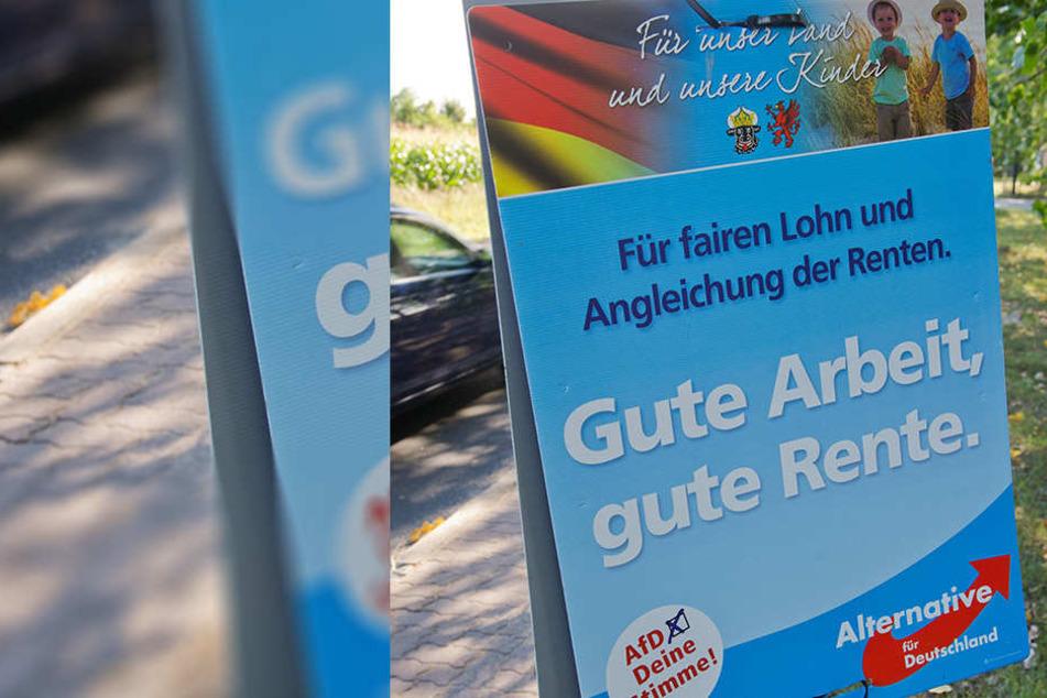 Nahe Köln ist ein Autofahrer in Wahlplakate der AfD-gerauscht.