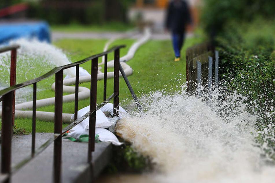 Das Wasser wurde mit allen Verunreinigungen in den Kanal gepumpt. Dies führt nun zu einem Massensterben der Fische. Anglerverbände sind besorgt. (Symbolbild)
