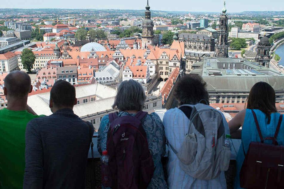 Schöne Aussicht(en)! Hier steigt Ihr Dresden aufs Dach