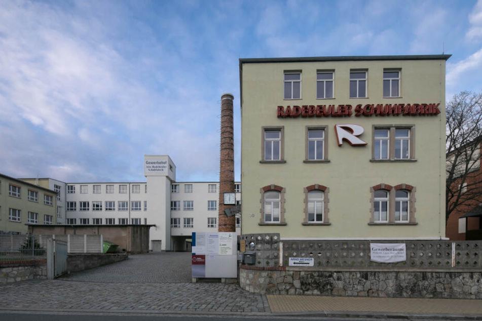 In dieser Industriehalle in Radebeul eröffnet Elisabeth Jahnke im Juni ihre Taekwon-Do-Schule.