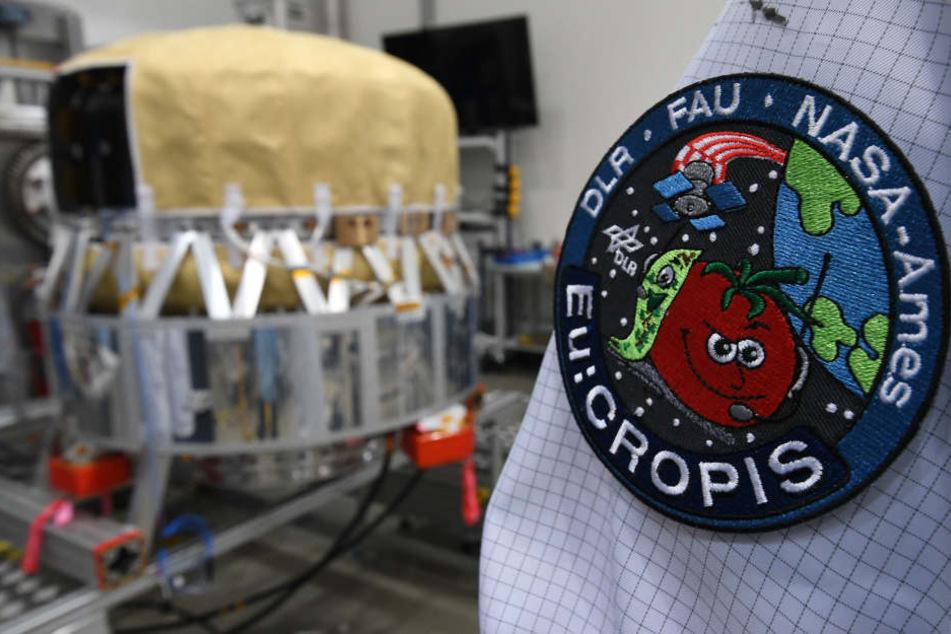 Ein Ingenieur steht an dem Forschungssatelliten, der als fliegendes Gewächshaus um die Erde kreisen soll.