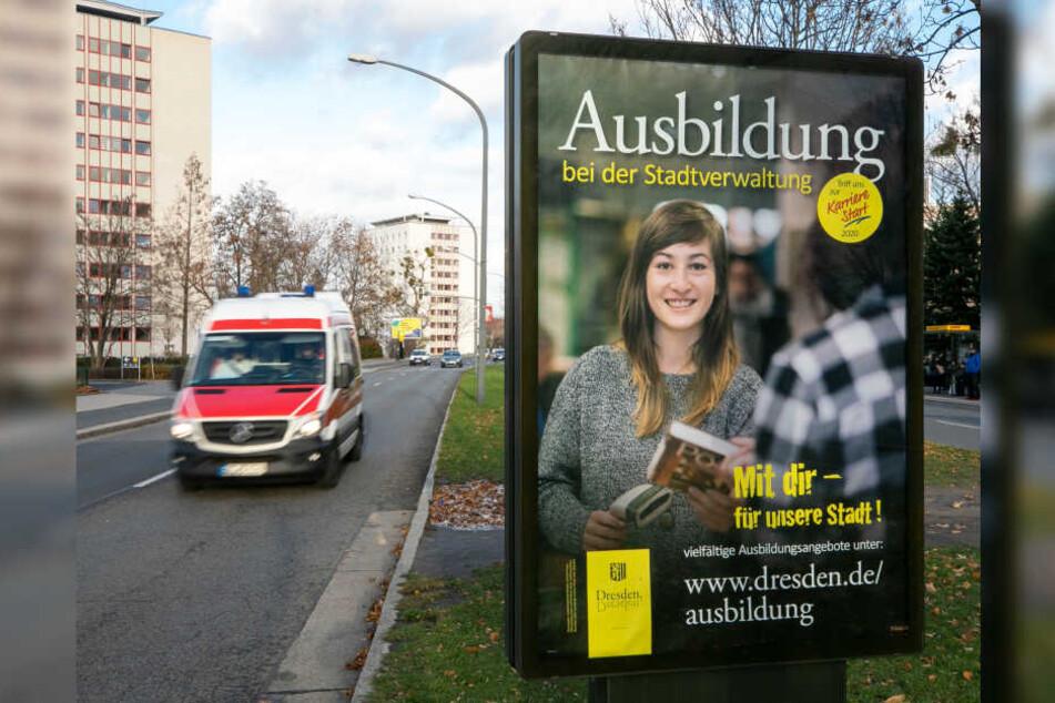 City-Light-Plakaten der Stadt werben um helle Köpfe.