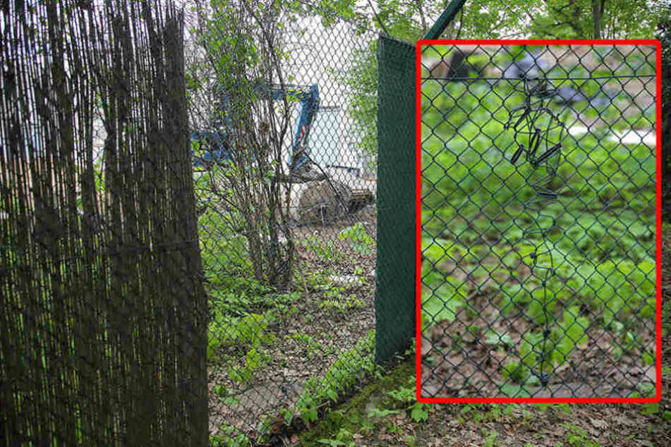 Zuerst zerschnitten die Ganoven den Zaun an der Tiergartenstraße...