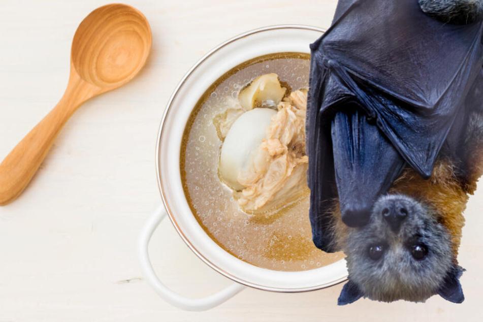 Coronavirus: Ist diese Fledermaus-Suppe der Grund für die Epidemie?