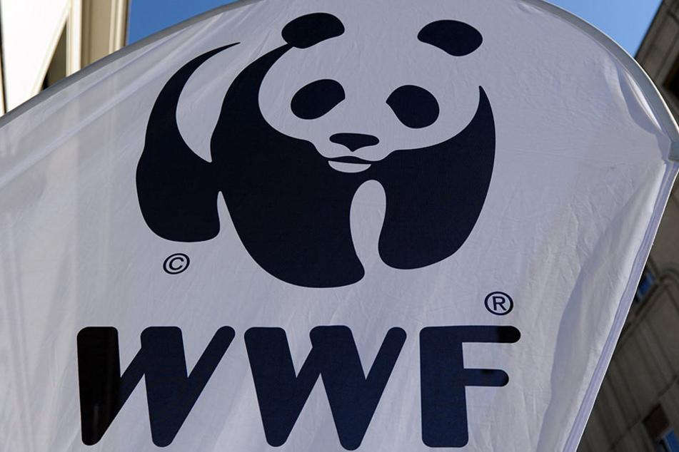 Der WWF lädt zur Earth Hour vor den Leipziger Zoo.