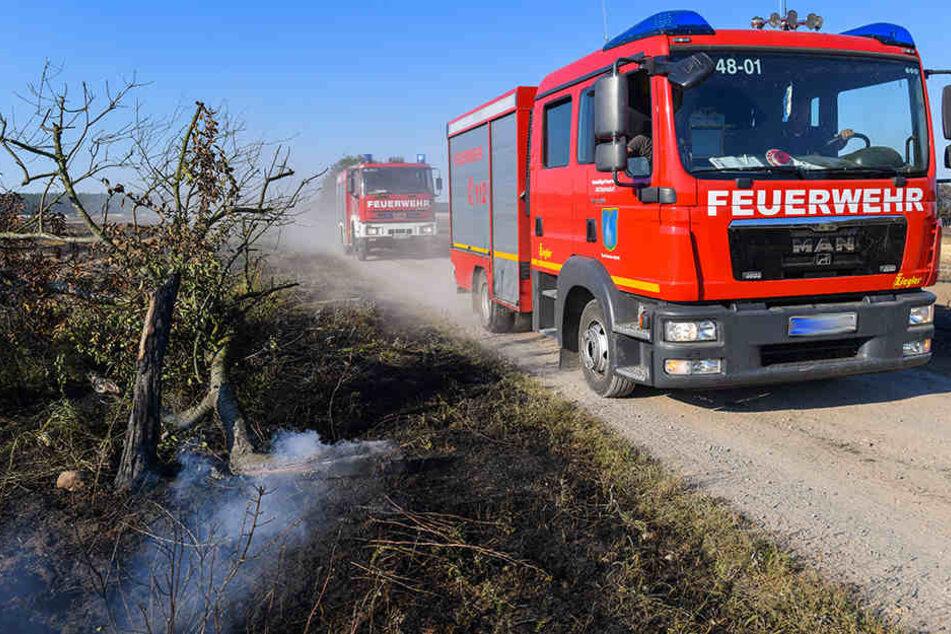 Etwa vier Hektar Feld und zahlreiche Strohballen gingen unweit der B173 in Flammen auf (Symbolbild).