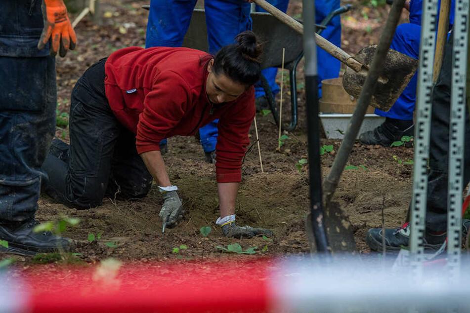 Ermittler von BKA und LKA untersuchen den möglichen Fundort in einem Waldstück bei Volkenroda.