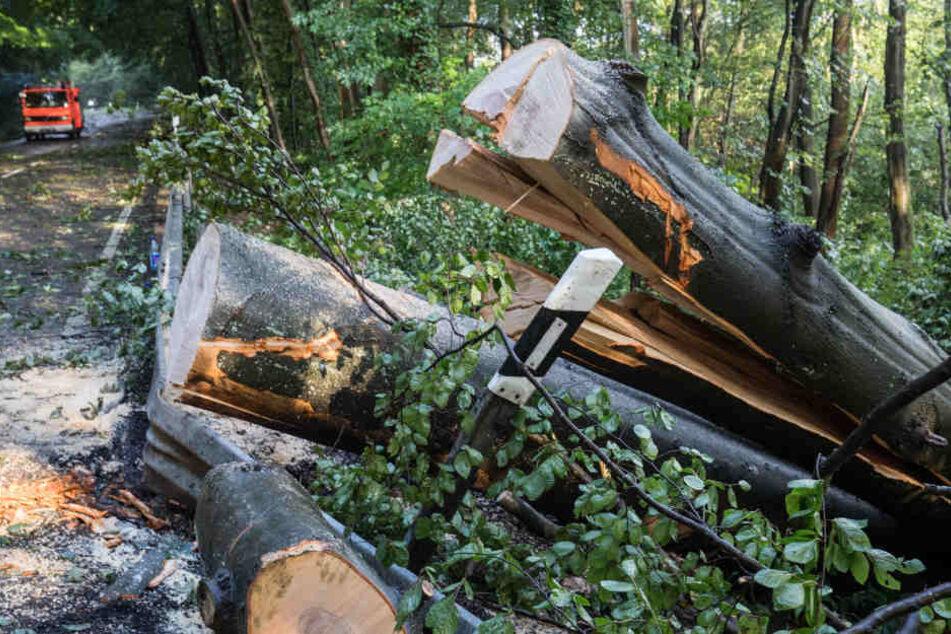 Sturm und Hagel richteten erheblichen Schaden an. (Symbolbild)