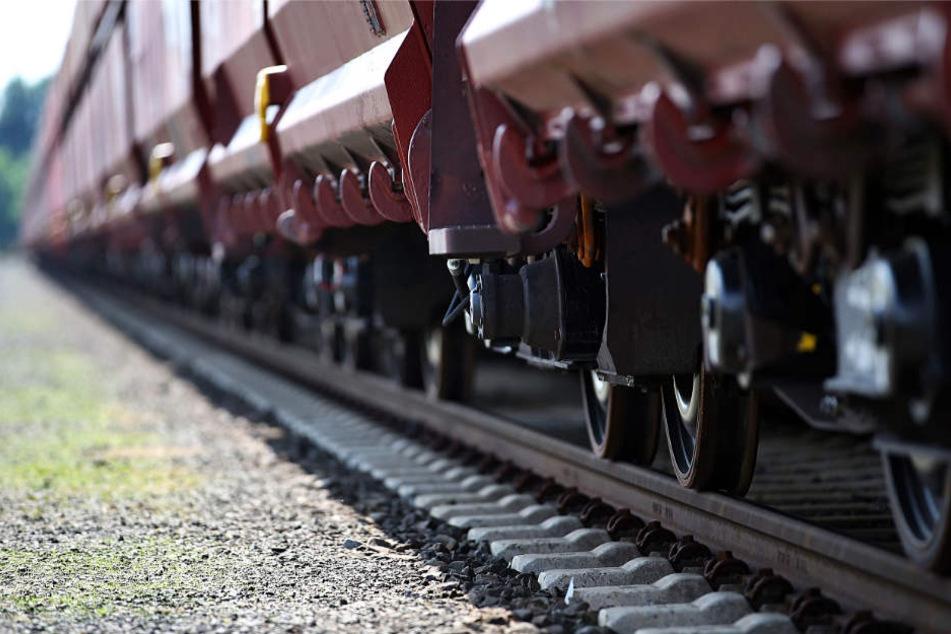Die drei Männer waren mit einem Güterzug illegal nach Deutschland eingereist (Symbolbild).