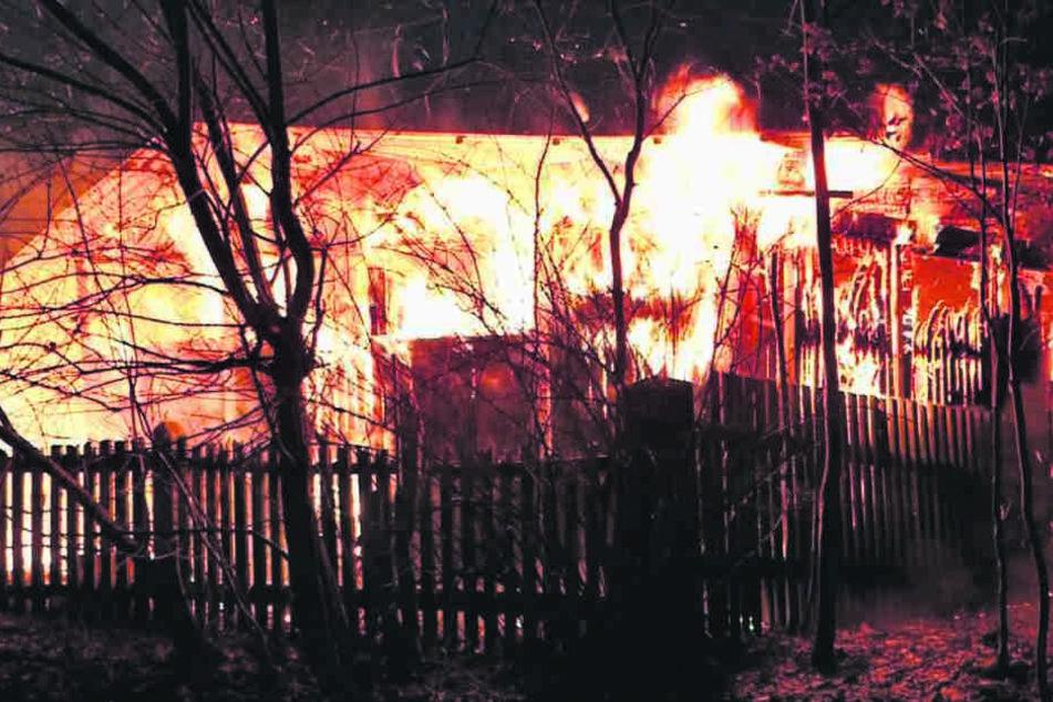 In diesen Flammen mussten mehrere Tiere qualvoll sterben