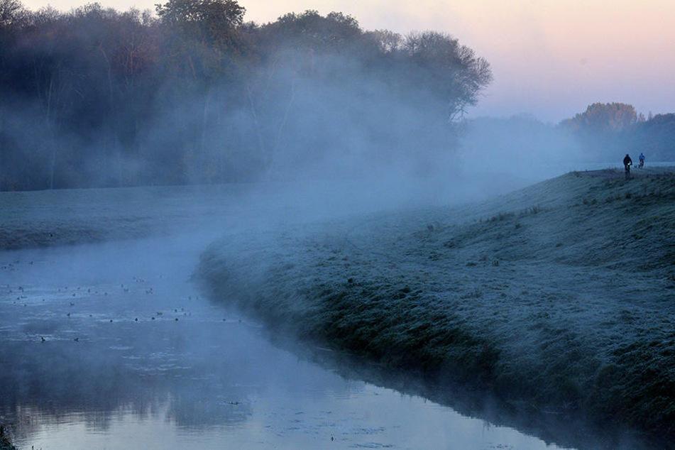 Das Naturschutzgebiet wird in den nächsten beiden Wochen unter Wasser stehen.