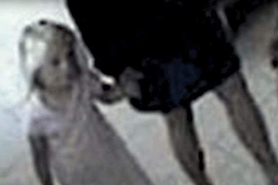 Ist auf diesem Videobild nach Maddies Verschwinden das Kind zu sehen?