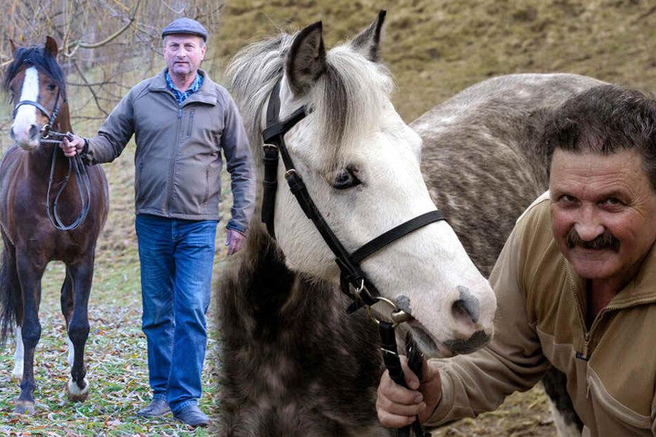frau pferd gestorben