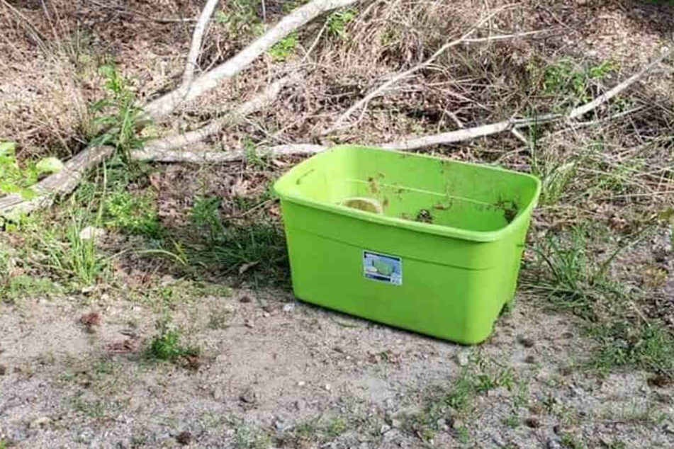 Passanten hatten diese Kiste am Wegesrand entdeckt.