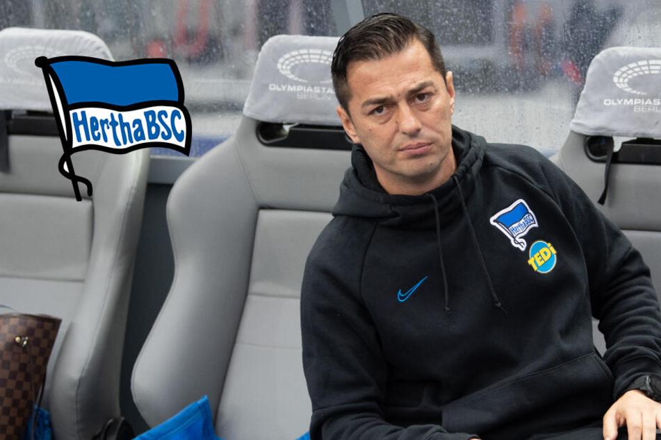 Nach Rassismus-Eklat: Hertha BSC zeigt klare Kante