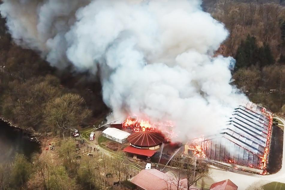 Über 250 Feuerwehrleute extrem gefordert: Pferdestall brennt lichterloh!