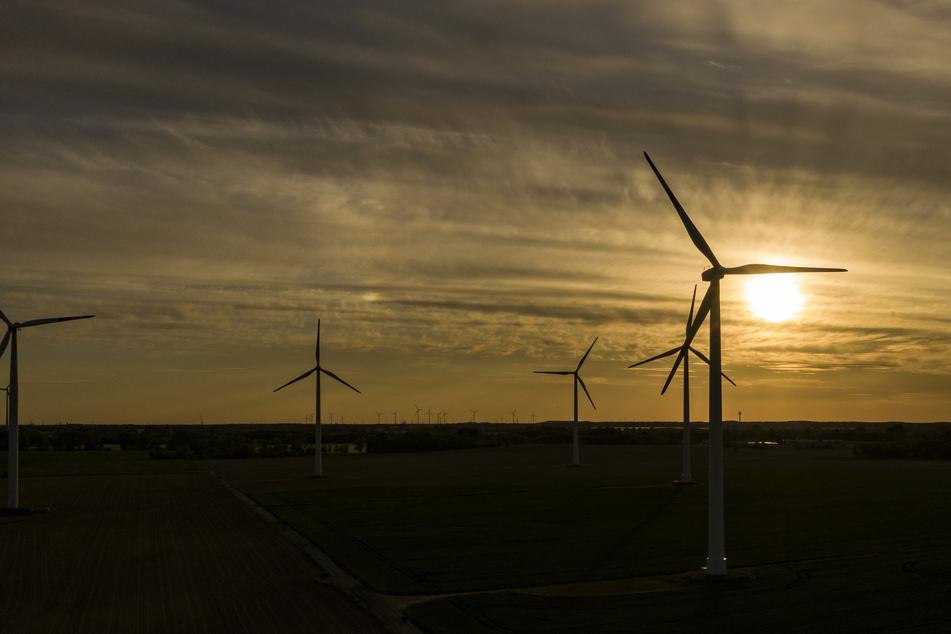 Windräder am Abend bei Werneuchen. Den Verbrauchern in Deutschland droht im kommenden Jahr ein kräftiger Anstieg ihrer Stromkosten.