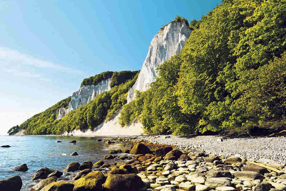 Bis zum Kreidefelsen auf Rügen tuckerte der rüstige Rentner aus dem Osterzgebirge auf seiner Schwalbe.