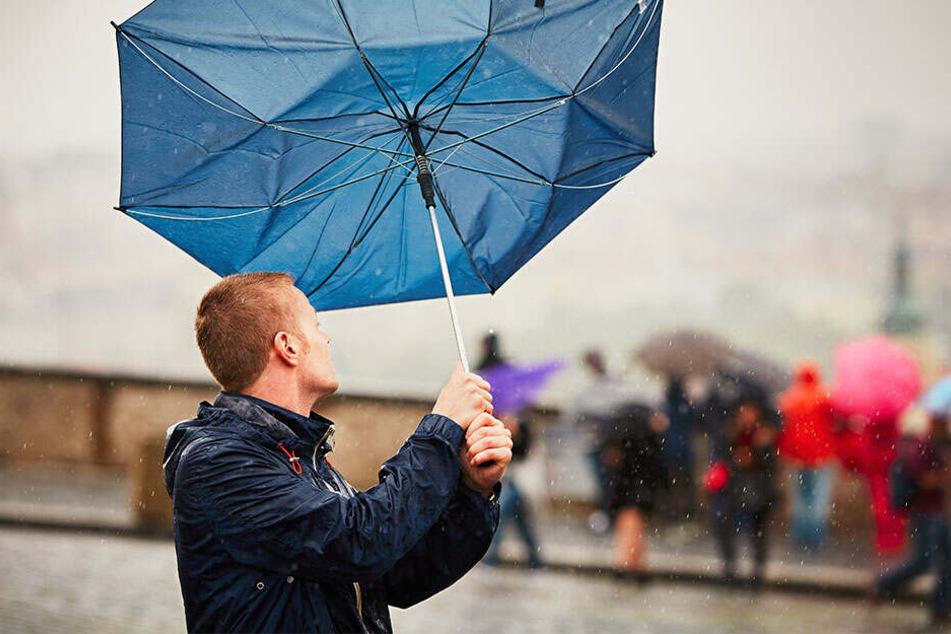 Bis Anfang nächster Woche müsst Ihr in ganz Deutschland mit ungemütlichem Wetter rechnen.