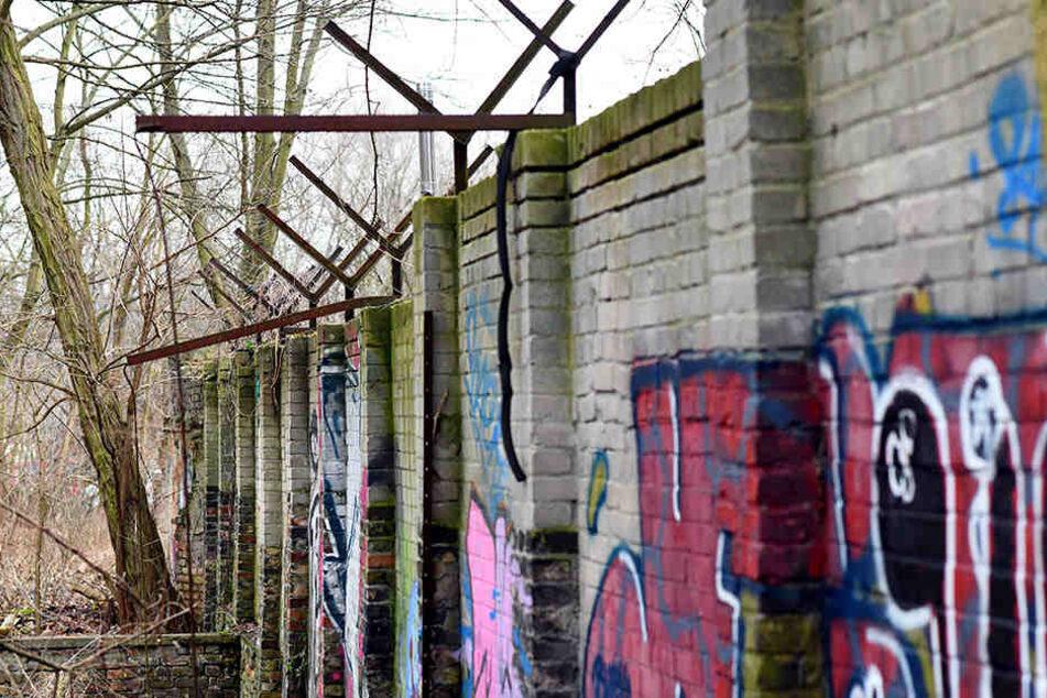 Das vom Heimatforscher entdecke Mauerstück wird nun unter Denkmalschutz gestellt.