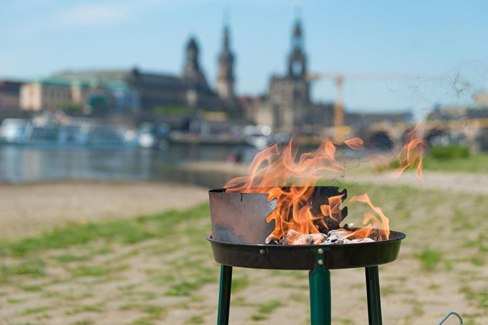 Nirgendwo feuern Dresdner ihren Grill lieber an als an der Elbe.