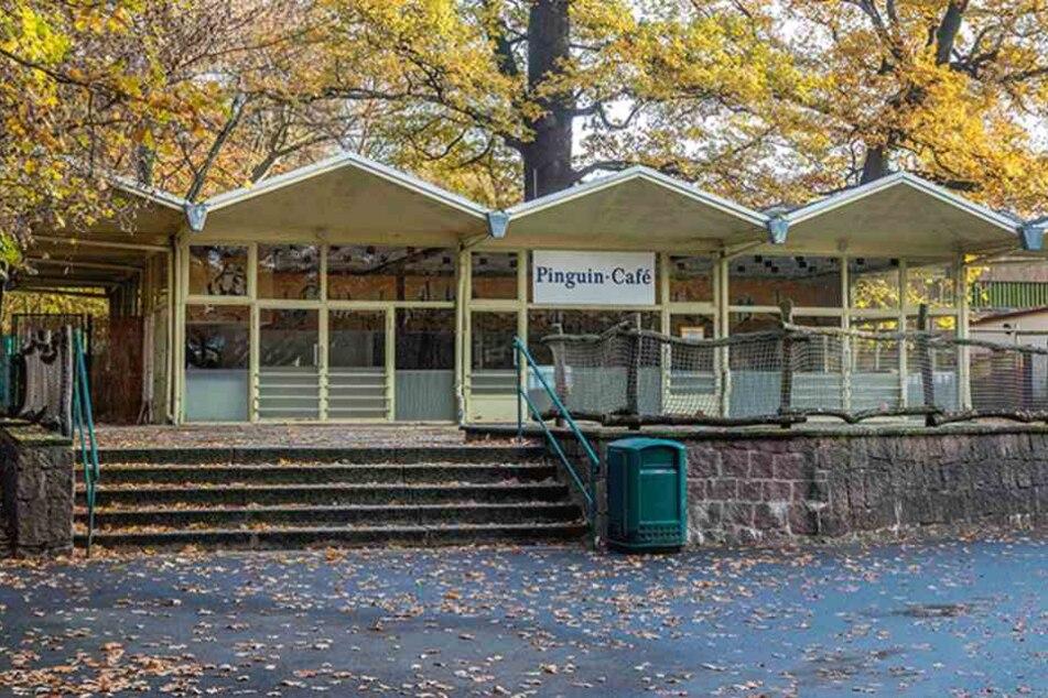Der Stadtrat entscheidet über die Zukunft des Pinguin-Cafés im Zoo.