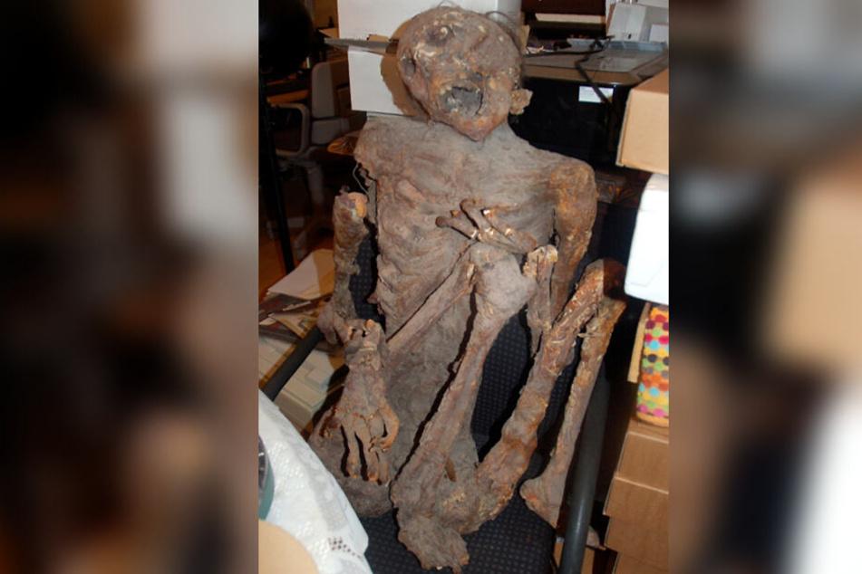 Bei der vermeintlichen Leiche handelte es sich lediglich um eine sehr realistische Styropor-Nachbildung einer Mumie.