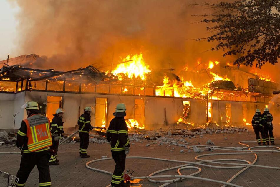 Verheerender Brand: Pferde verbrennen qualvoll!