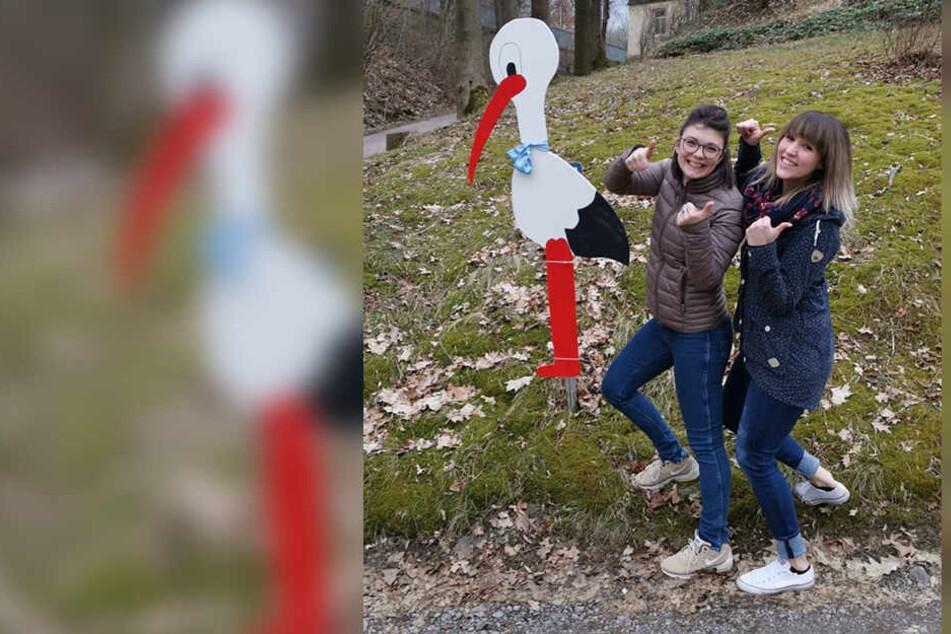 So schön! Mit viel Mühe hatten Jessica Zwinzscher (24) und Janine Lauckner (24) den Storch für ihre Freundin gebastelt. Nun hat ihn einfach jemand geklaut.
