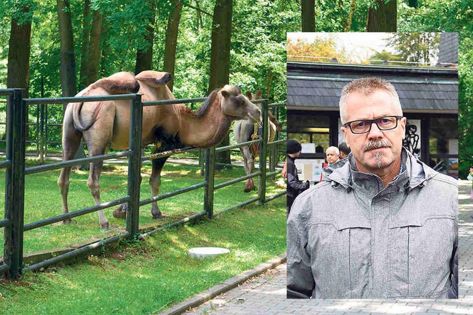 Das neue Gutachten soll erläutern,ob die Haltungsformen noch zeitgemäß sind.Ordnungsbürgermeister Miko Runkel (55, parteilos).