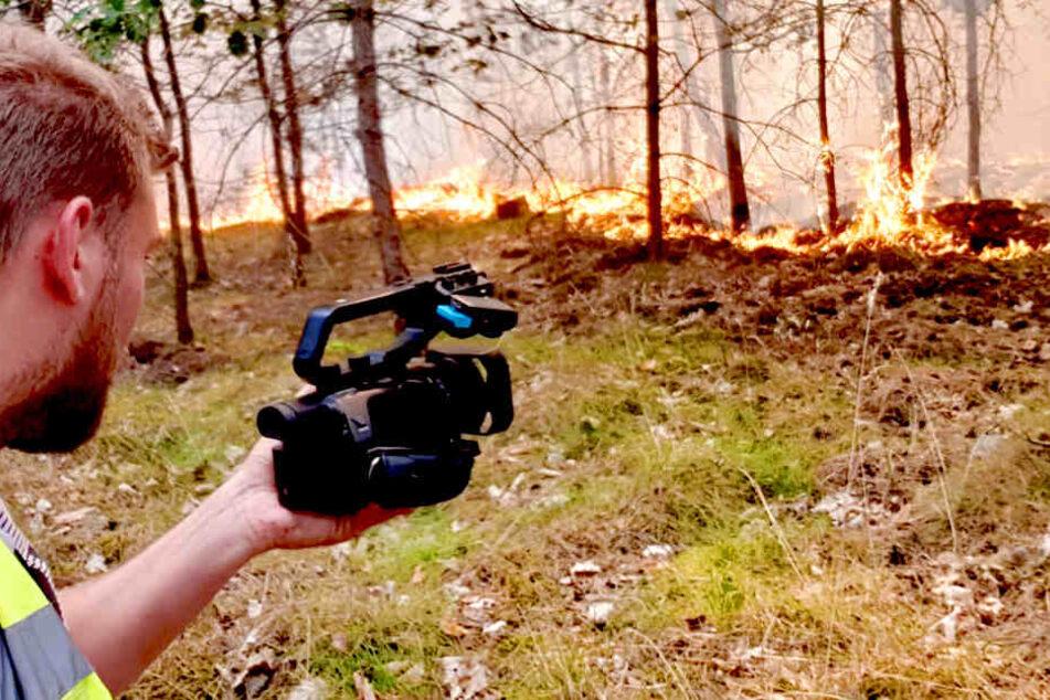 Nächster Wald in Brandenburg in Flammen!