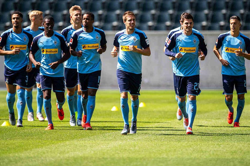 Der Gladbacher Kader ist vielversprechend, eine Qualifikation für die Champions League möglich.