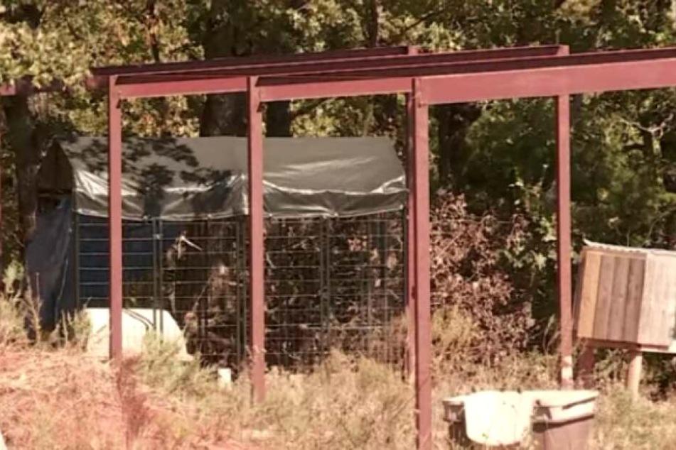 Aus diesem Käfig brachen die drei Hunde aus.