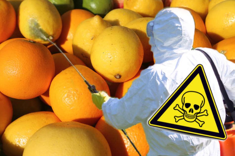 Orangen, Mandarinen, Grapefruits verunreinigt! EU verbietet Insektenkiller