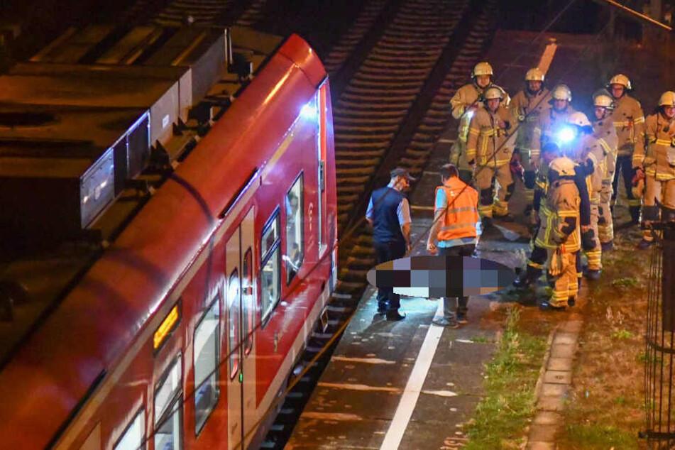 S-Bahn rammt Wildschwein: Fahrgäste kommen mit dem Schrecken davon