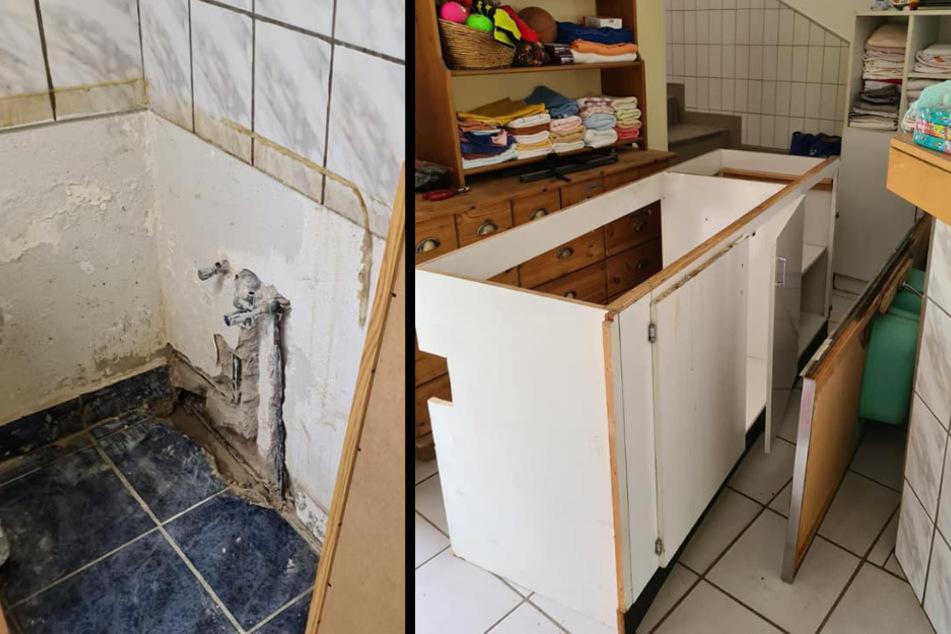 Kölner Tierheim nach zwei Wasserrohrbrüchen in großer Not!