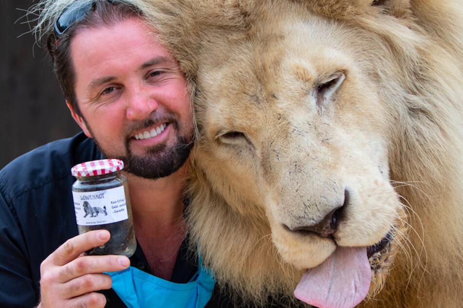 Martin Lacey (43), Löwen- und Tigerdompteur im Circus Krone, steht neben seinem Löwen King Tonga und hält dabei ein Glas mit Löwenkot in den Händen, das der Circus Krone verkauft.