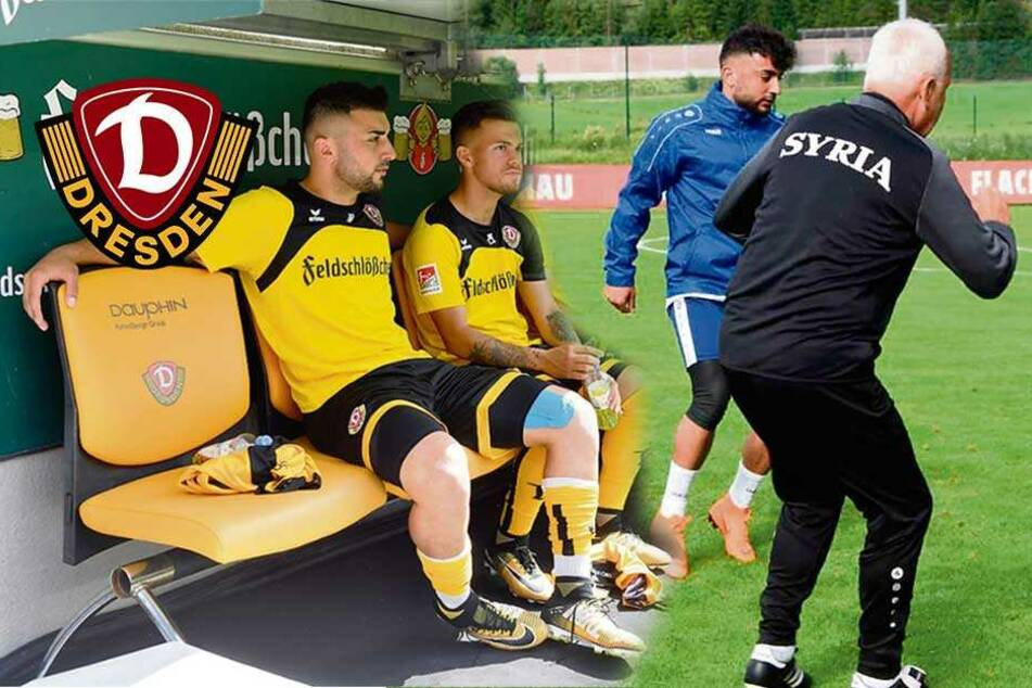 Aosman: Dynamo-Stammplatz oder raus aus Nationalelf