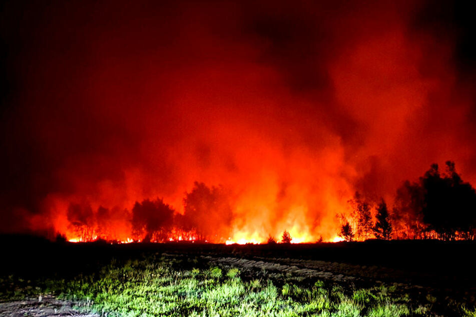 Schon 100 Hektar! Wieder riesiger Waldbrand bei Jüterbog