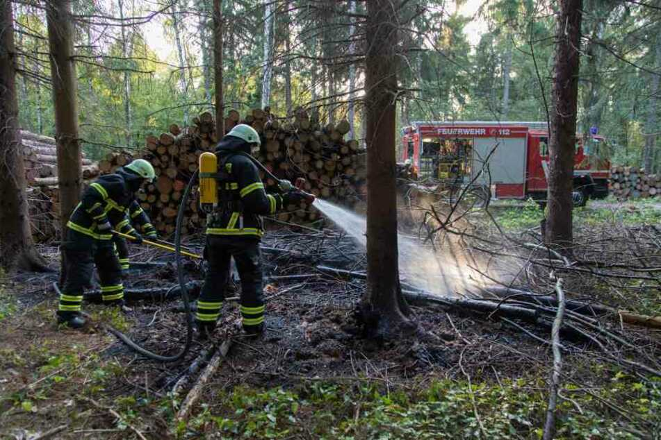 Waldbrand in Freiberg: Waren hier Zündler am Werk?