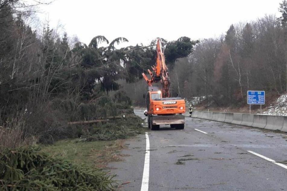 Sturmschäden Hessen