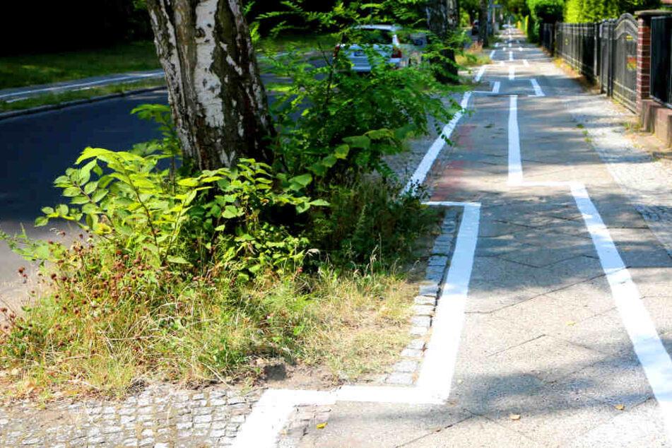 Irgendwie erinnert der Radweg neben der Leo-Baeck-Straße an das Videospiel Tetris.