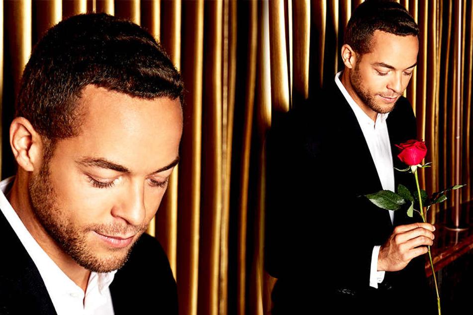 """Alle """"Bachelor""""-Teilnehmerinnen wollen eine Rose von Andrej Mangold."""