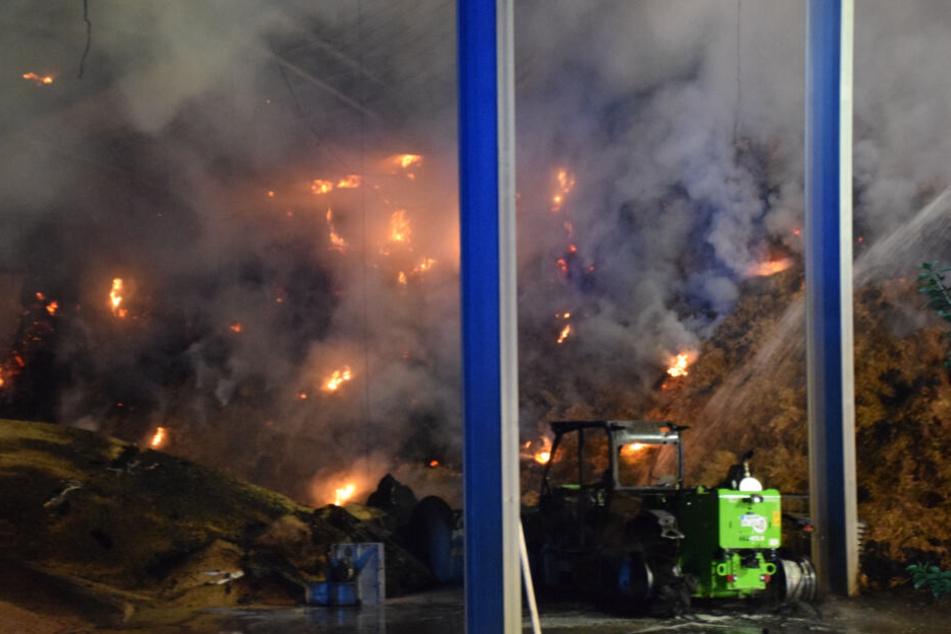 Bei dem Brand kamen zirka 5.000 junge Puten ums Leben, der Sachschaden wird auf über drei Millionen Euro geschätzt.