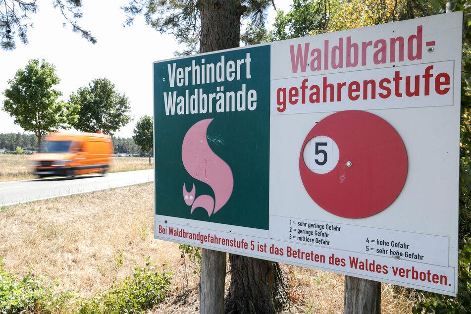Mit den steigenden Temperaturen erhöht sich auch die Waldbrandgefahr in Sachsen wieder deutlich. (Archivbild)