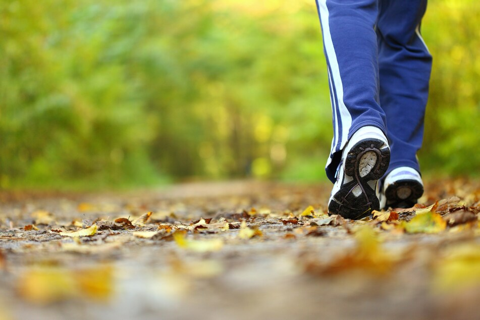 Menschen, die im Wald joggen gehen, sollten laut den Forschern auf den ständigen Blick auf die Fitness-Uhr verzichten. (Symbolbild)