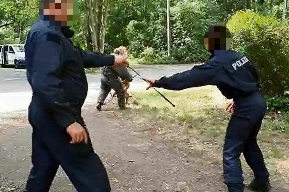 """Szenen eines polizeilichen """"Hundetrainings"""": Die Hundeführerin lässt sich vom Ausbilder einen Stock geben ..."""