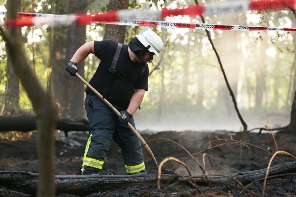Waldbrand bei Dormagen: Erhöhte Gefahr wegen Trockenheit in NRW